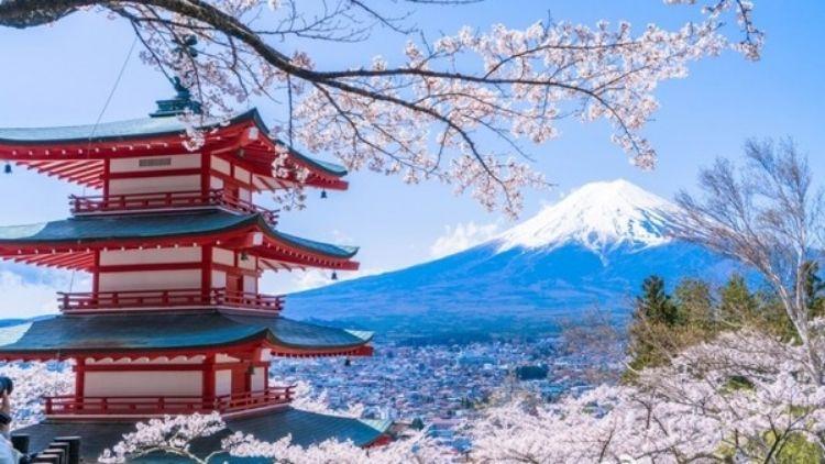 日本留学必备!那些你需要用到的APP